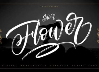 Silver Flower Brush Font