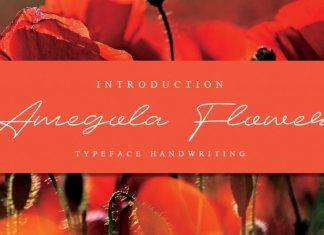 Amegola Flower Handwritten Font