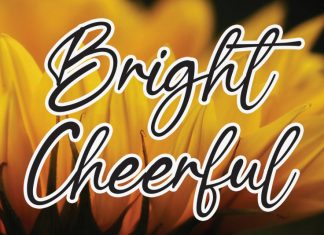 Bright Cheerful Script Font