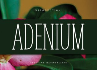 ADENIUM Display Font