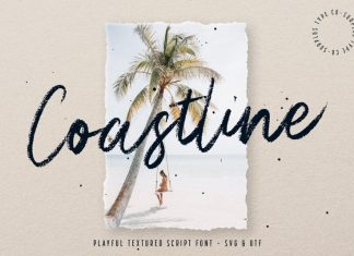 Coastline Brush Font