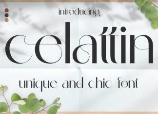 Celattin - Unique Ligature Font